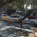 Comienza la instalación de zonas de sombra en las paradas de taxi de Marbella