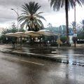 El Ayuntamiento de Almería hará obras de mantenimiento en las 28 paradas de taxi